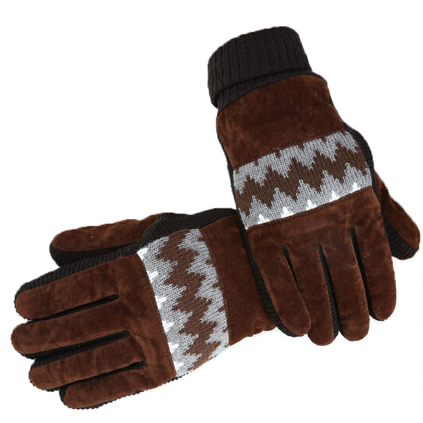 ホップフィラデルフィア冒険家手袋の男性の冬プラスベルベット寒い暖かいサイクリング秋と冬の防風タッチスクリーンの綿手袋の水リップル黒 (色 : Brown)