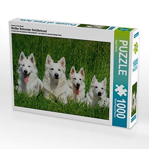 CALVENDO Puzzle Weißer Schweizer Schäferhund 1000 Teile Lege-Größe 64 x 48 cm Foto-Puzzle Bild von Sista-Tierfoto