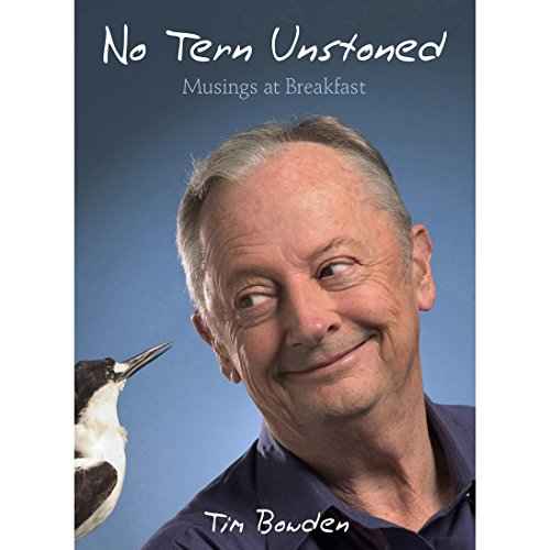 No Tern Unstoned audiobook cover art