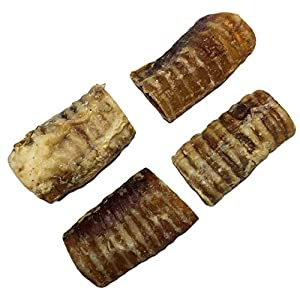 K9 Connoisseur Low to Odor Free Trachea Dog Chews for Dogs Made in USA Grain & Rawhide Free Natural Dog Treats for Large Dogs Aggressive Chewers Also The Best for Medium & Small Breed Dogs 4 Pack