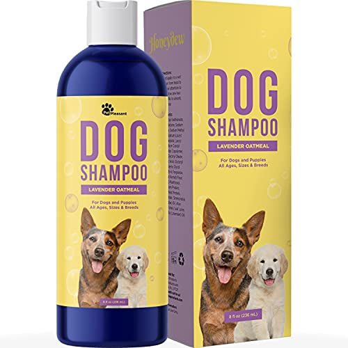 Cleansing Dog Shampoo for Smelly Dogs - Refreshing Colloidal Oatmeal Dog Shampoo for Dry Skin and Dog Bath Soap - Moisturizing Dog Shampoo Oatmeal Lavender Formula for Great Smelling Dog Wash