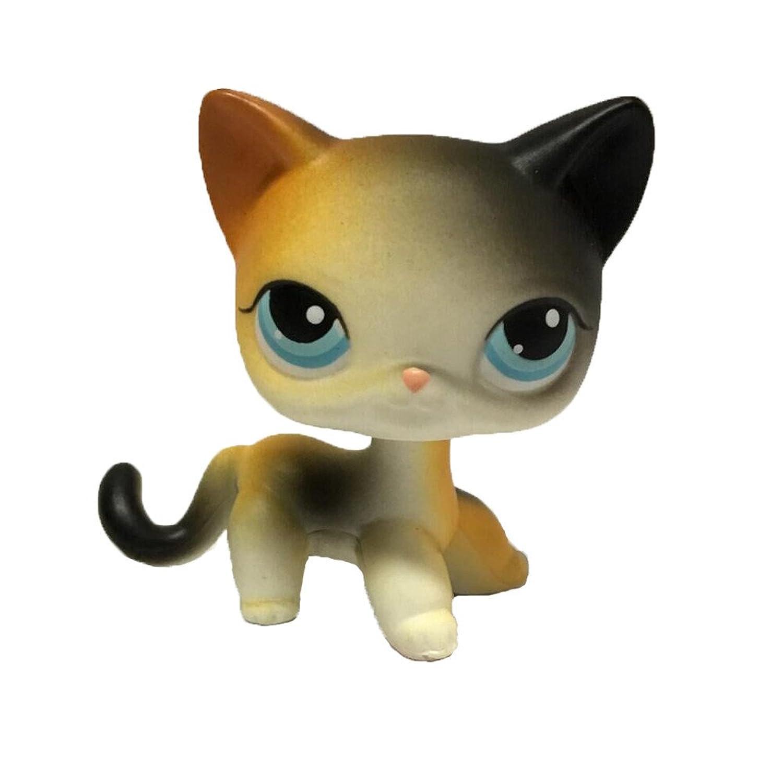 GOOD lask レアリトルレストペットショップクリーム色短髪猫かわいい虹目猫のおもちゃ
