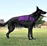 Xdog Weight & Fitness Vest for Dogs - A Weighted Dog Vest Used to Build Muscle, Improve Performance, Combat Obesity & Anxiety - Improve Your Dog's Overall Health & Exercise. (Large, Purple)
