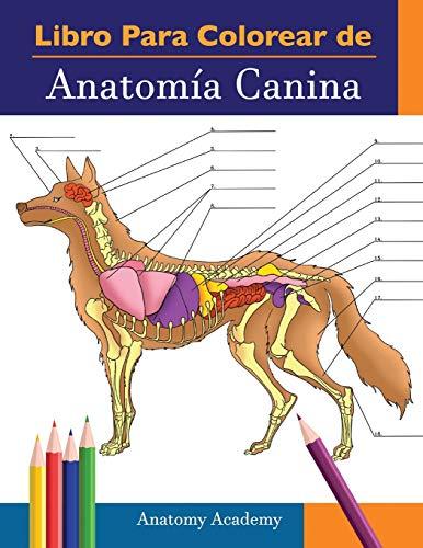 Libro para colorear de Anatomía Canina: Libro de Colores de Autoevaluación Muy Detallado de Anatomía Canina | El Regalo Perfecto Para Estudiantes de Veterinaria, Amantes de los Perros y Adultos