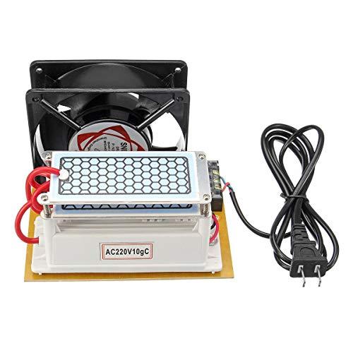 Frieed Generador de ozono cerámico de 220V 10 g de esterilizador de purificador de Aire de Placa de cerámica DIY con máquina de Ventilador Durable