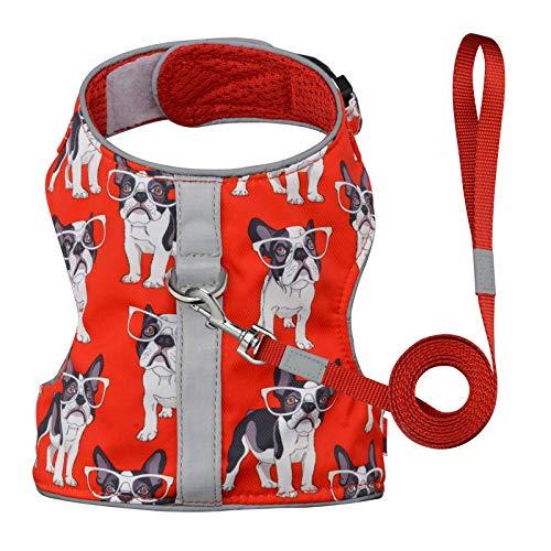 Anbeer Imbracatura per Animali Domestici per Gatti e Cuccioli di Cane di Piccola Taglia con Guinzaglio in Nylon da 1,5 m (M, Rosso)