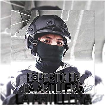 Experto En La Artillería