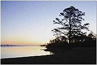 HDジャクソンビル フロリダ-日没時の遊歩道9025135( 19x27の大人向けプレミアム1000ピース ) 0110pintu-155262K9Q0R (Color : Photo 7)