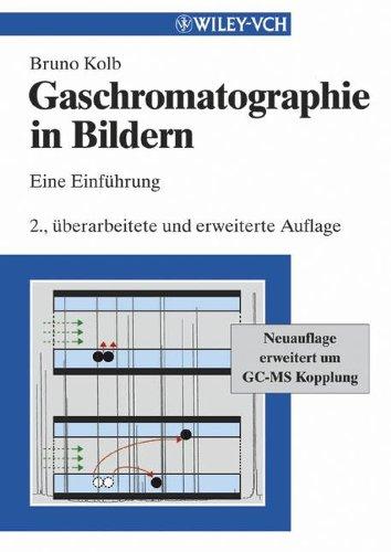 Gaschromatographie in Bildern: Eine Einfhrung (German Edition): Eine Einführung