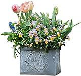 Planter Art Vase pot