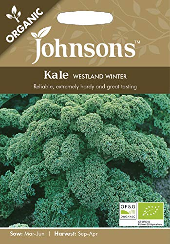 Johnsons UK/JO/VE Graines de chou biologique Westland Winter - 1