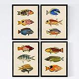 Nacnic Set 4 Blatt Fisch Jahrgang bunten Effekt. Ostsee.