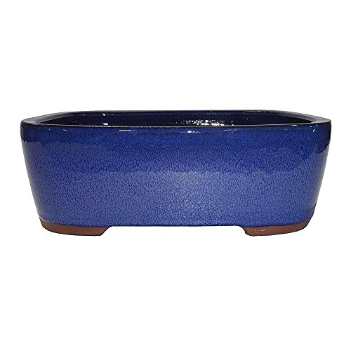 Brussel's 10' Rectangle Bonsai Glazed Ceramic Pot (Large, Blue)