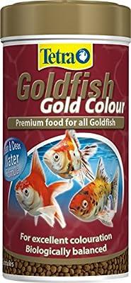 Tetra Goldfish Gold Colour Fish Food, Premium Fish Food with Colour Enhancers for All Goldfish, 75 g