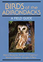 birds of adirondacks