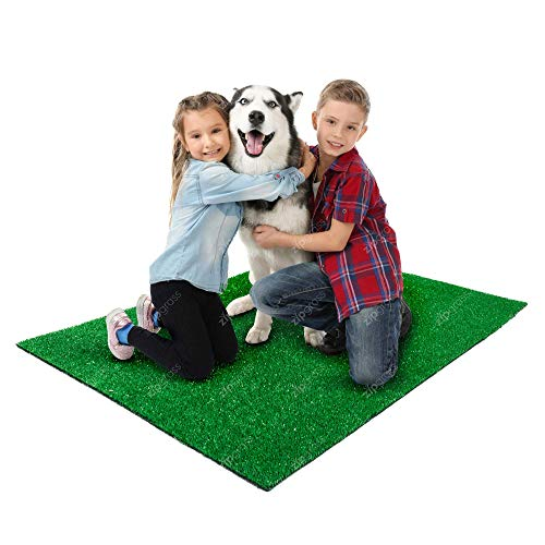 ZipGrass Sztuczna trawa Phoenix zabawna trawa do użytku na zewnątrz i wewnątrz, sztuczny trawnik ogrodowy astro, odpowiedni dla zwierząt domowych, dzieci, architektura krajobrazu i ekspozycji (2 m szerokości, 10 m długości)