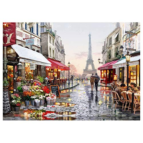 Christmas Jigsaw Puzzles 1000 Piece for Adult, Paris Flower Street, Jigsaw Puzzles Set, Best Jigsaw Puzzles Game (30x20 inch)