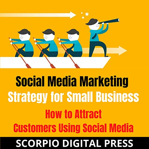 Social Media Marketing Strategy for Small Business cover art