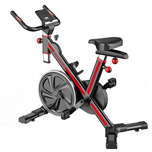 Fitleader FS1 Stationary Exercise Bike Indoor...