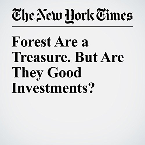 Forest Are a Treasure. But Are They Good Investments? copertina