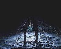 番号でペイントキャンバスカラー原稿カップルはキス降雪の夜が大好きDiyデジタル絵画番号で現代の壁アート油絵ホリデーギフト家の装飾ビッグサイズ カスタマイズ可能 40x50cm DIYフレーム