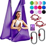 DASKING Deluxe 5m/Set Yoga Swing Aerial Yoga Hammock kit with Daisy Chains Carabiners, Fabric & Guide, Dark Purple-1 by DASKING