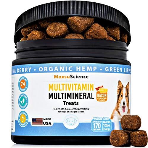 10 in 1 Dog Multivitamin Multimineral Treat –...