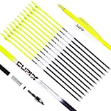 LWANO Carbon Arrow Archery 30inch Hunting Target Practice Arrows for Compound & Recurve Bow Spine 500 with Removable Tips (Pack of 12)(Yellow)
