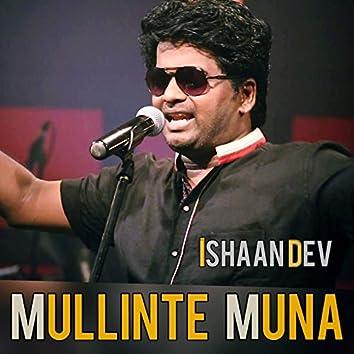 Mullinte Muna