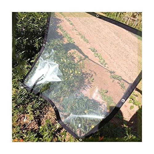Cubierta de Lona a Prueba de Agua Espesa con espesos con Lona Clara y Plegable con Agujero de Metal plástico for vegetación de automóviles (Color : Transparent, Size : 1x2m)