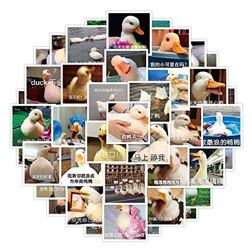 YCYY 50 Cartoon Cute Animal Duckling Emoji Personality Motorcycle Suitcase Notebook Book Stickers