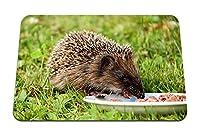 22cmx18cm マウスパッド (ハリネズミ料理食品草) パターンカスタムの マウスパッド