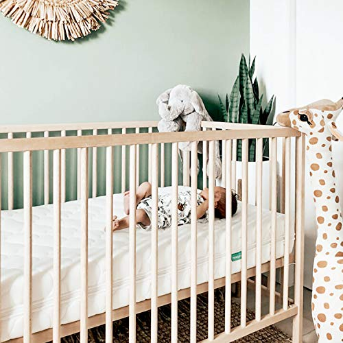 Newton Baby Crib Mattress and Toddler Bed - 100% Breathable Proven to Reduce Suffocation Risk, 100% Washable, 2-Stage, Non-Toxic Better Than Organic, Removable Cover - Deluxe 5.5