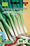 Germisem Biologico Ishikura Long White Semi di Erba Cipollina 2 g