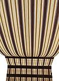 Toldo de Sol para Exterior con Anillas, Toldo Parasol para Balcones, Terrazas, Cenadores, Acampadas, Lista Para Usar, Medidas 140 x 300 cm, con 8 + 2 Anillas y 8 Ganchos y 2 Cordoneses Made in Italy