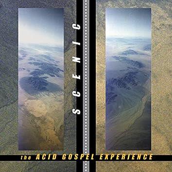 The Acid Gospel Experience