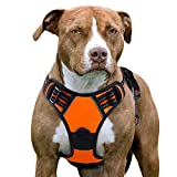 Eagloo No Pull Dog Harness with Front Clip, Walking Pet Harness with 2
