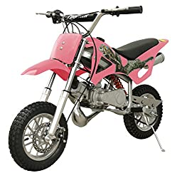 gas powered mini dirt bike