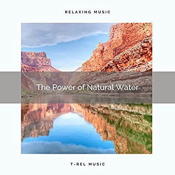! ! ! ! The Power of Natural Water