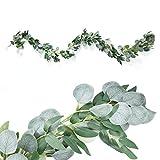 Xunlong - Guirnalda de hojas de eucalipto artificial con enredaderas de sauce para...