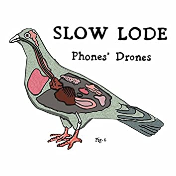Phones' Drones
