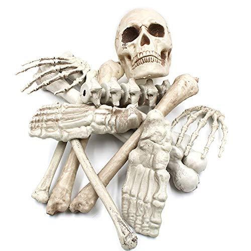 Macabolo - Juego de 9 esqueletos de Halloween para Halloween