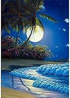 クロスステッチキット ダイヤモンドの絵画 夜の海辺の風景 ダイヤモンド塗装 ダイヤモンドアート 全面貼り付けタイプ ビーズアート 5D モザイクアート ハンドメイド DIY 手芸キッ 30x40 cm