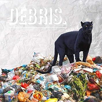 Debris Pt.I