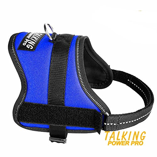Julius-K9 TPP Harness Size Mini-Mini Blue