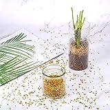 Transparente Hochzeits-Streudekoration, 10.000 Acryl-Kristalle, Diamanten, Strass für Hochzeit, Brautparty, Vasen, Perlen, acryl, gold, 0,30 cm - 7