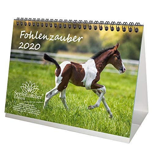 Fohlenzauber DIN A5 Tischkalender 2020 Pferde und Fohlen - Seelenzauber