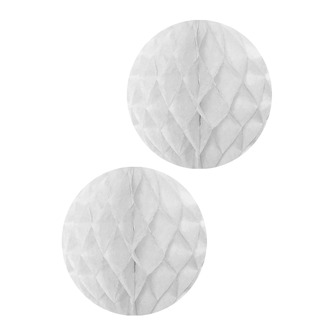 Allydrew Hanging Party Decoration, 14 Inch Tissue Honeycomb Ball for Weddings, Birthday Parties, Baby Showers, and Nursery Décor (2 pack), White