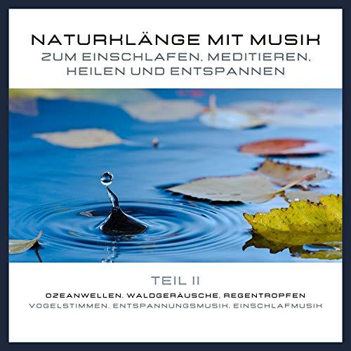 Naturklänge mit Musik zum Einschlafen, Meditieren, Heilen und Entspannen 2 cover art