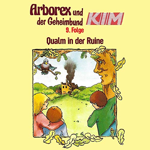Couverture de Qualm in der Ruine